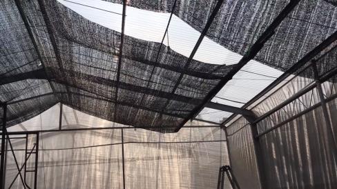 Atap-Plastik-UV-VS-Paranet-Mana-Yang-Terbaik